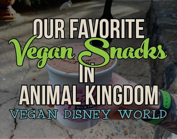 Our favorite vegan snacks in Disney's Animal Kingdom