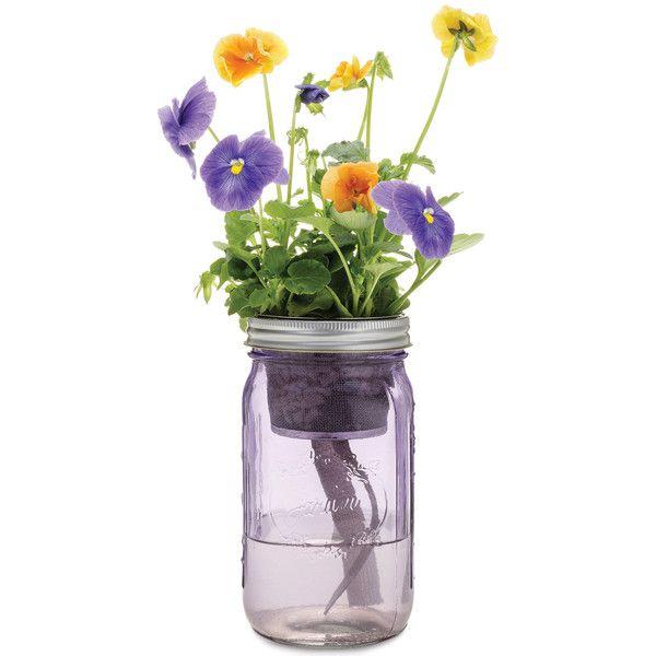 Garden Jar Pansy Indoor Flowers Mason Jar Flowers Self Watering Planter