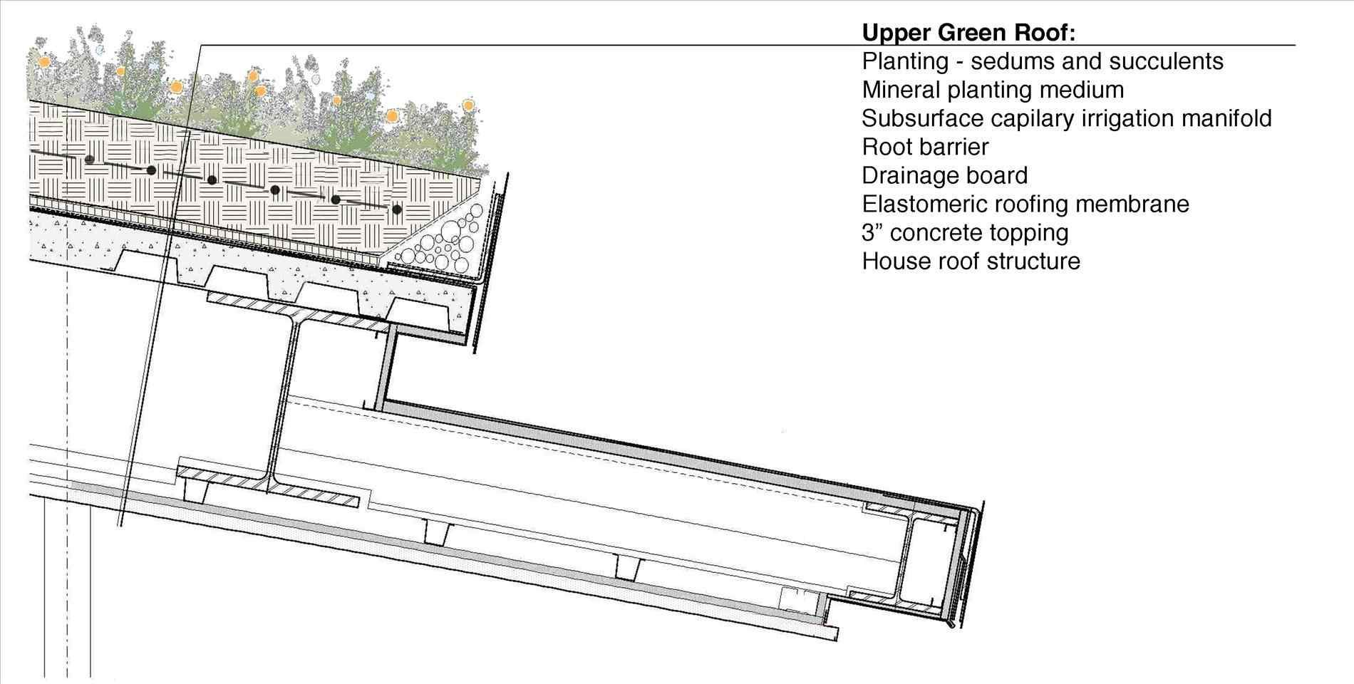 Green Roof Detail Section