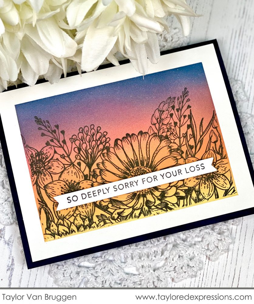 February 2020 Release Day! Sympathy cards, Birthday