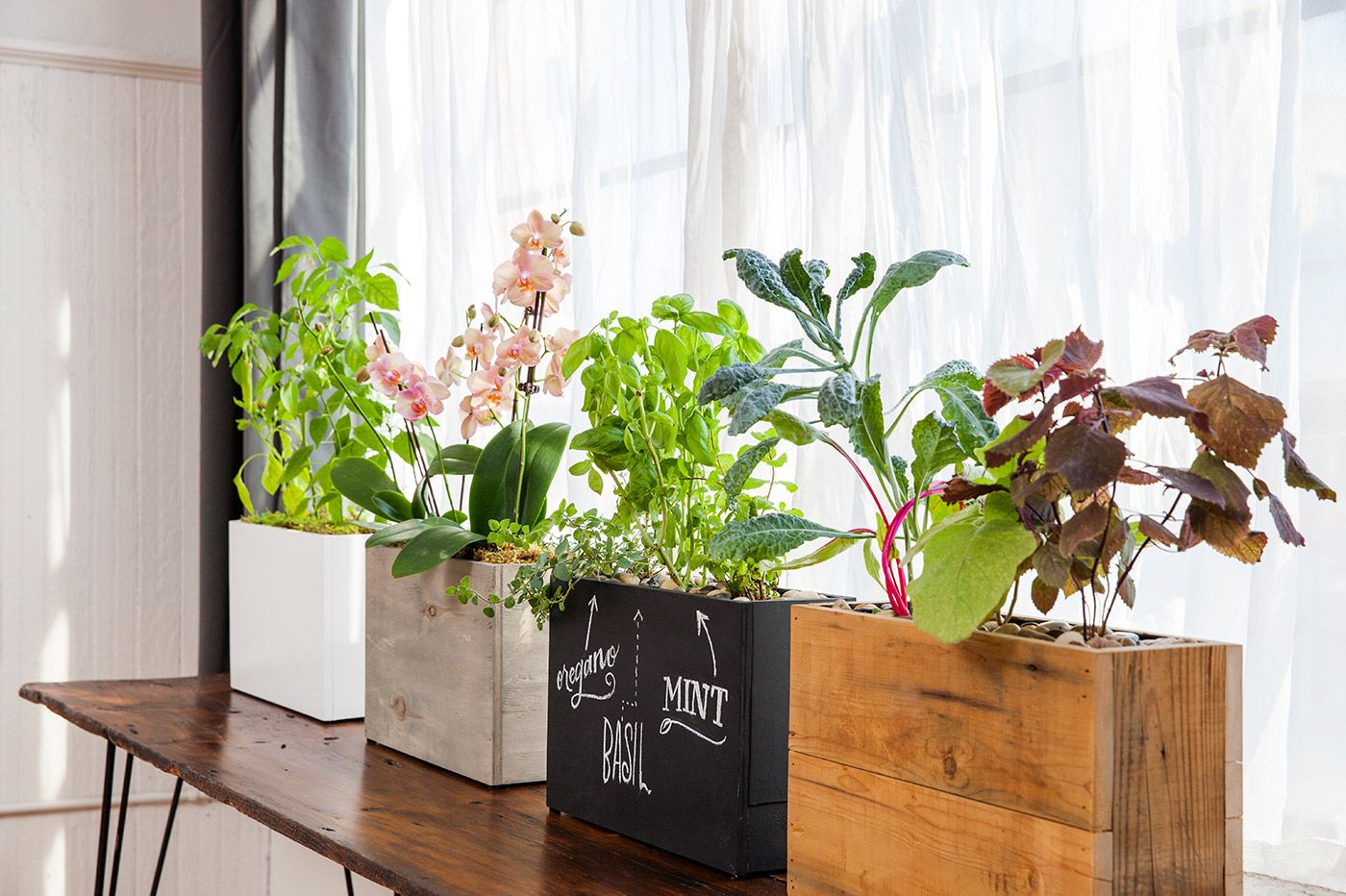 Hydroponic, solar-powered planters from Modern Sprout