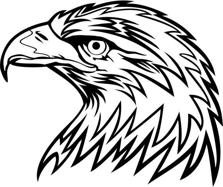 Aguia Vector Cabeca Padroes De Madeira Queimada Aguia Desenho E