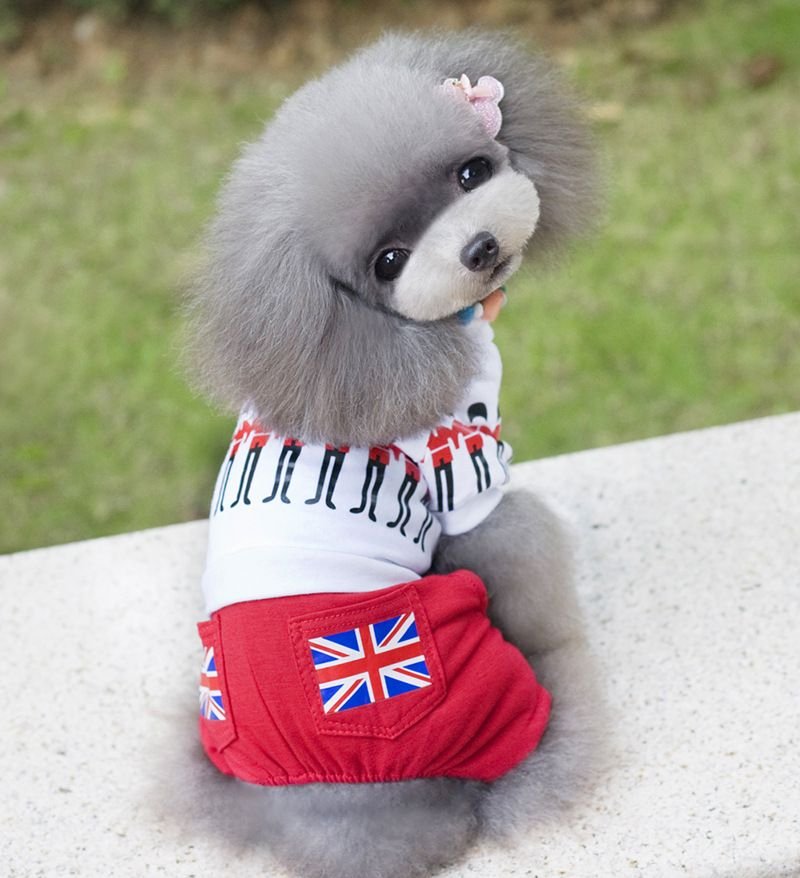 Click To Buy 2016 New Arrival Winter Clothing For Puppy Flag
