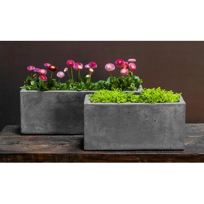 Campania International, Inc Long 4-Piece Fiber Cement Pot Planter Set | Perigold