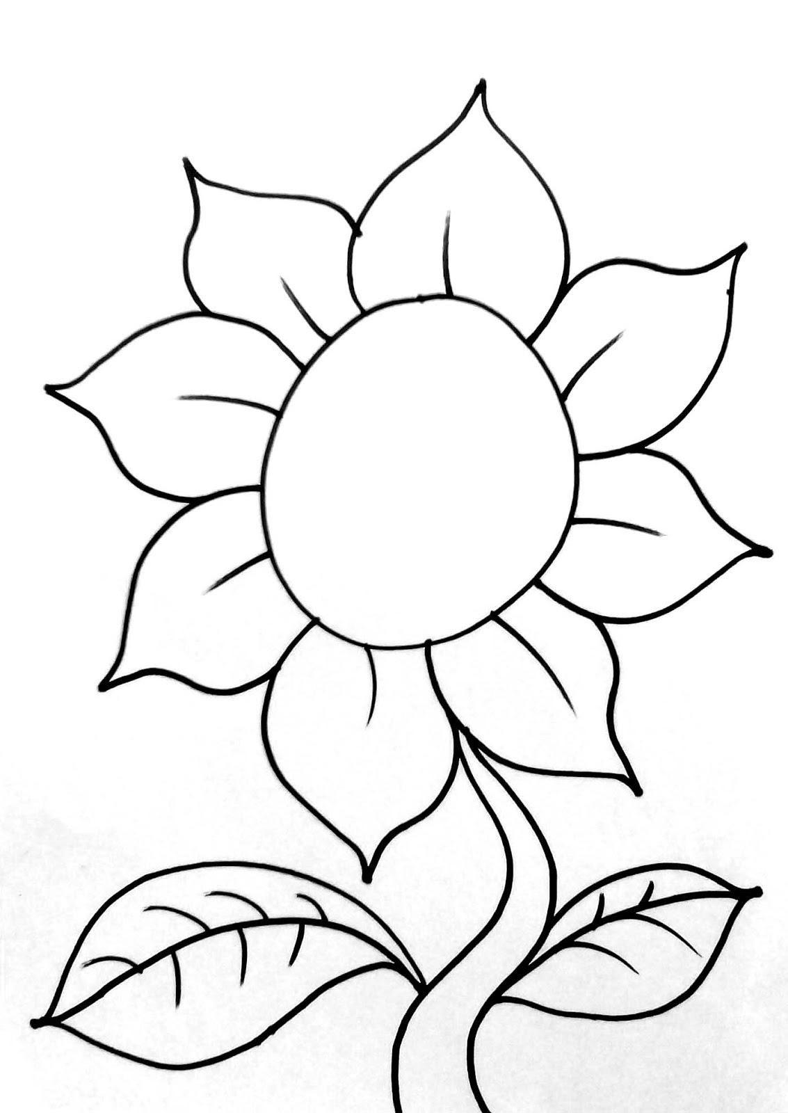 Contoh Gambar Bunga Untuk Diwarnai Menggambar Bunga Matahari Gambar Bunga Bunga