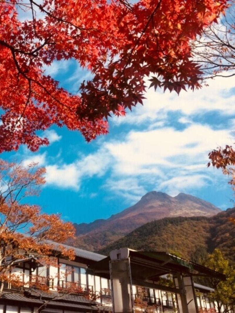 由布院温泉の紅葉 Autumn Leaves Of Yufuin Onsen 温泉 由布院 温泉 旅館