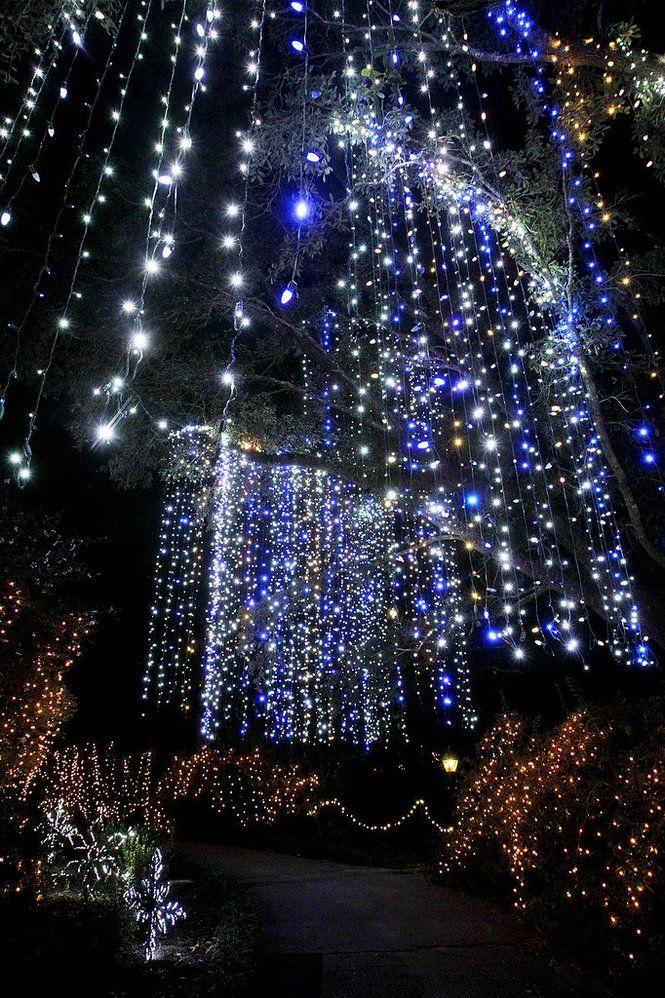 Bellingrath Gardens Christmas Lights Bellingrath Gardens and Home