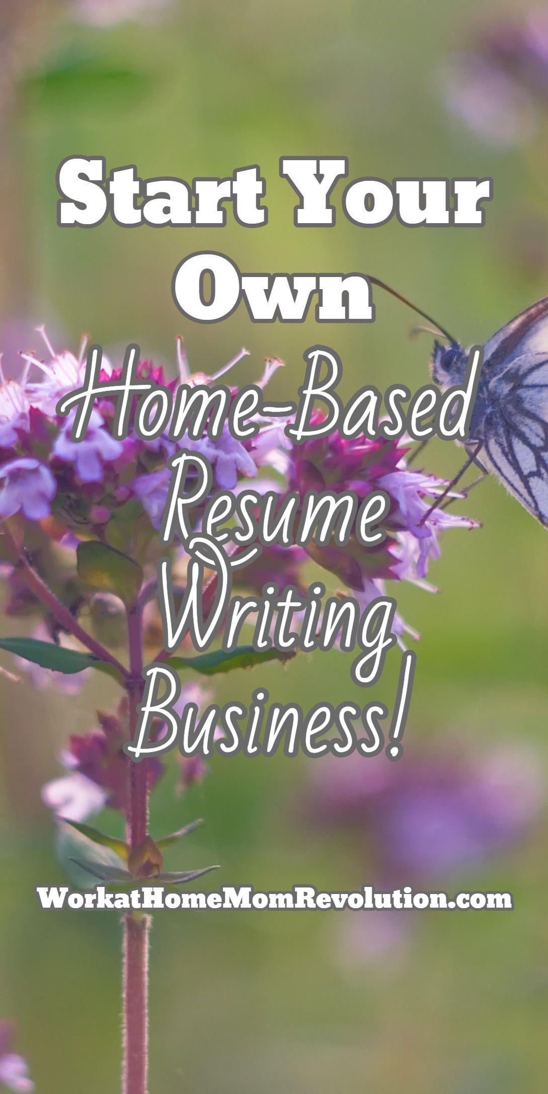 How To Start A Resume Writing Business Start Your Own  Homebased Resume Writing Business .