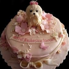 1000 images about birthday cakes for dogs on pinterest dog on birthday cakes for dogs in los angeles