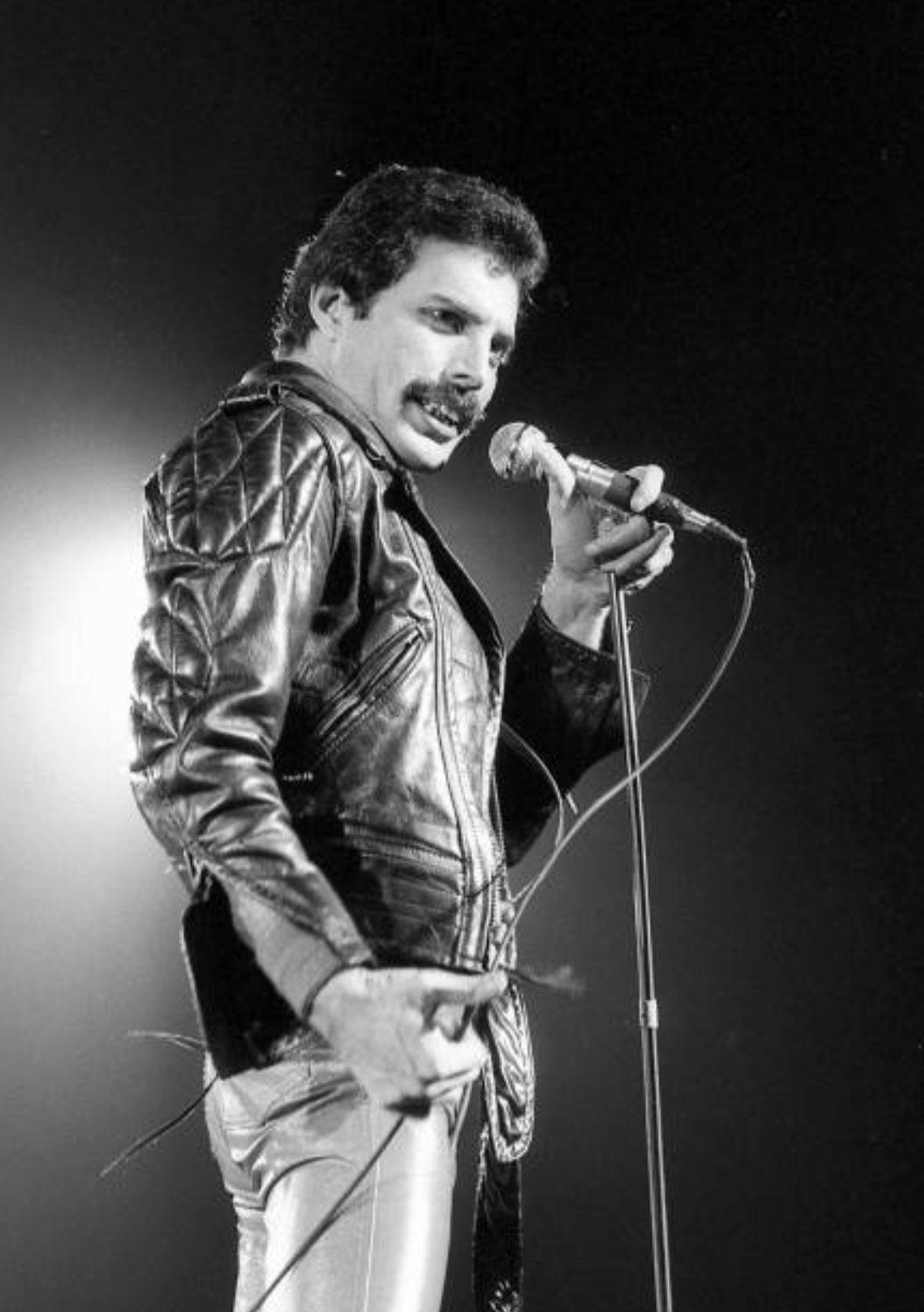 Pin by ME on ️Freddie Mercury ️ Freddie mercury, Queen