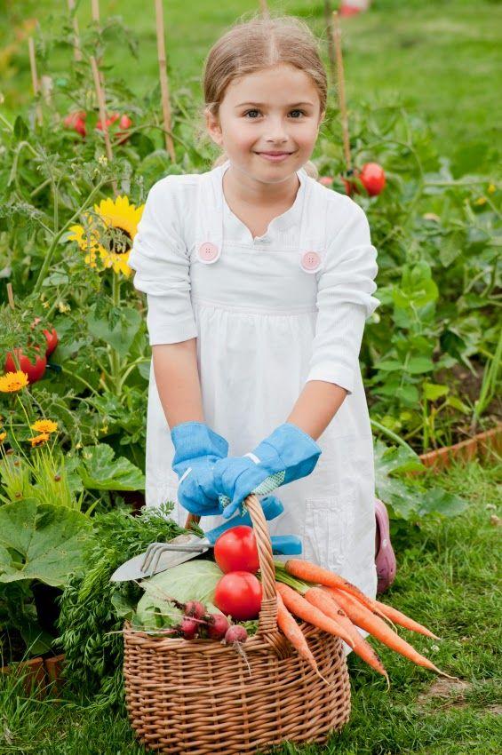 should gardening be taught in schools