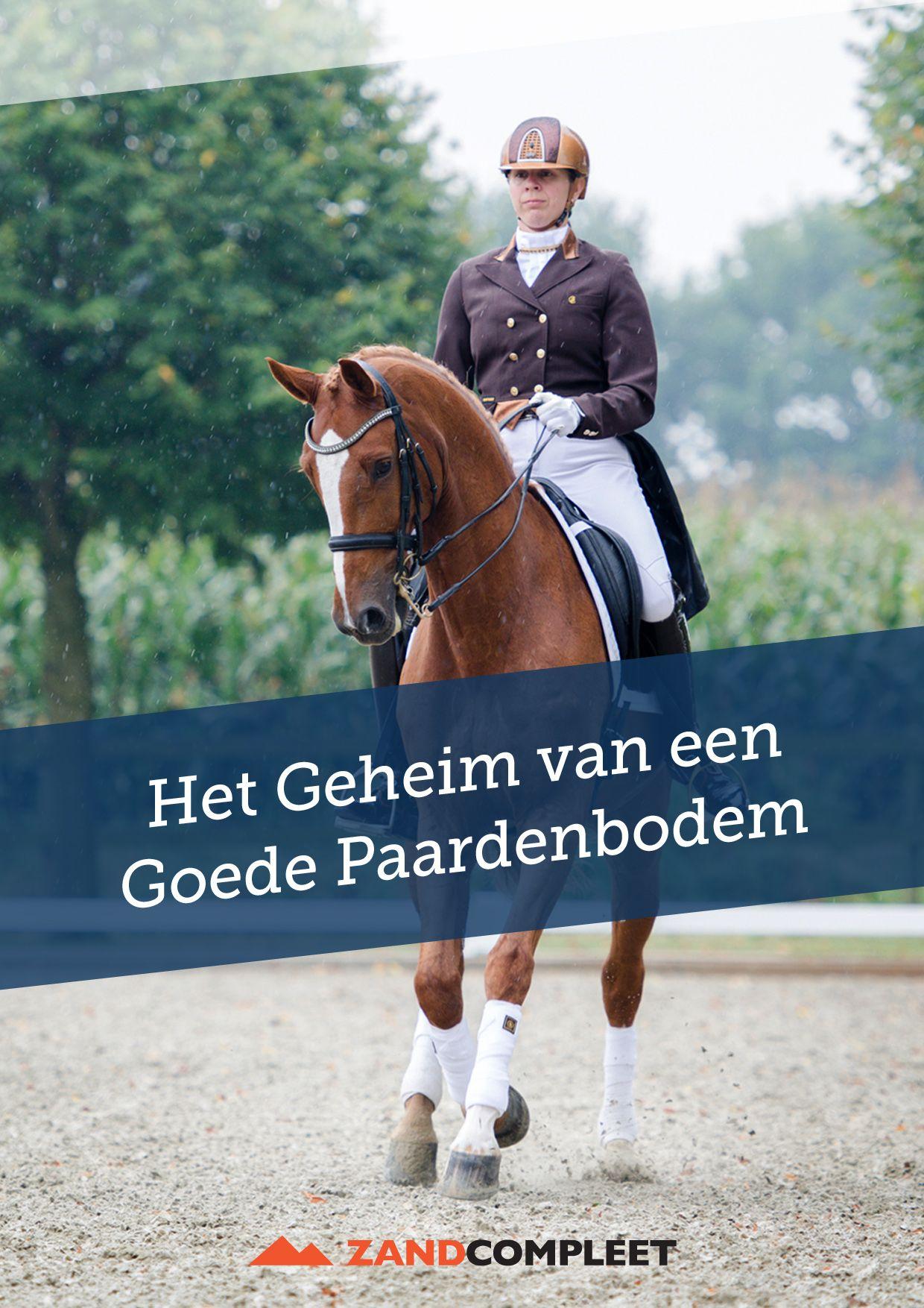 E-book, leer alles over de aanleg van een goede paardenbodem