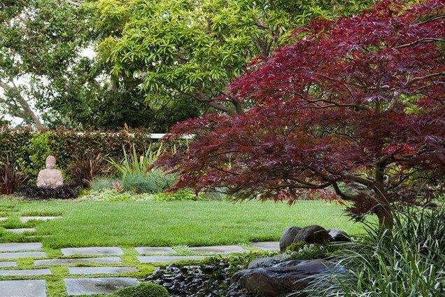 Asian Garden, Buddha, Japanese Maple  Asian Landscaping  Shepard Design Landscape Architecture  Greenbrae, CA