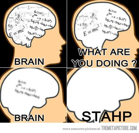 Exam brain quotes