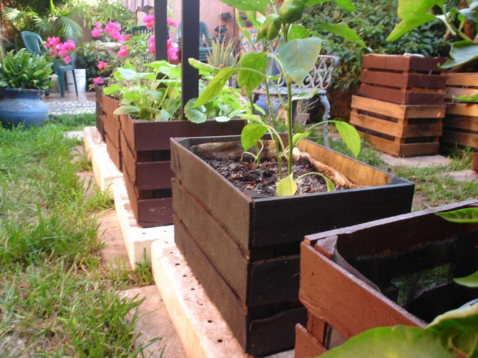 Macetas En Huacales Buscar Con Google Como Hacer Un Huerto Huerto Organico Jardín De Vegetales