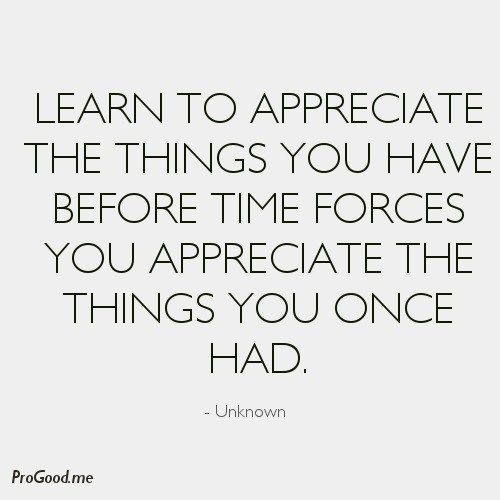 Learn To Appreciate Things Quotes: Learn To Appreciate The Things You Have Before Time Forces