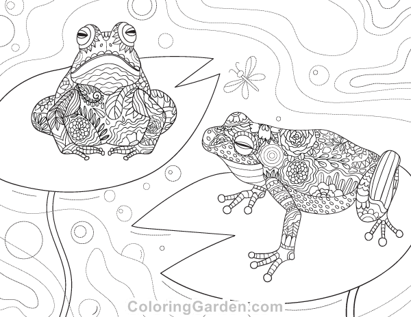 Free printable frog adult coloring page. Download it in