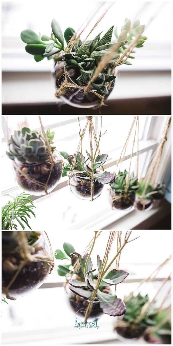 Small Crop Of Window Garden Diy