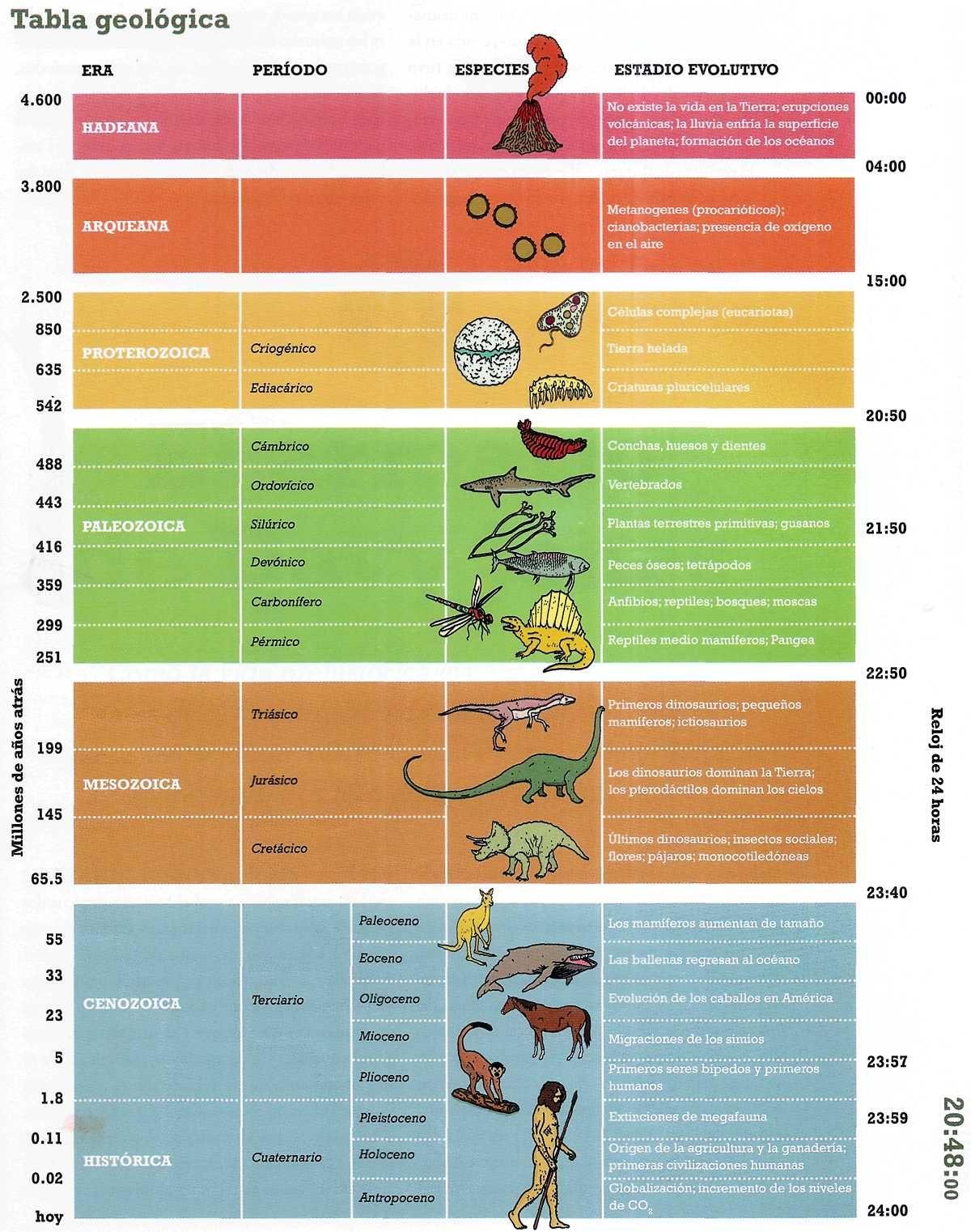 Las Eras Geologicas Del Planeta Tierra Primeros Seres Vivos Organicos Ciencias De La Tierra Origen De La Tierra Enseñanza De La Geografía