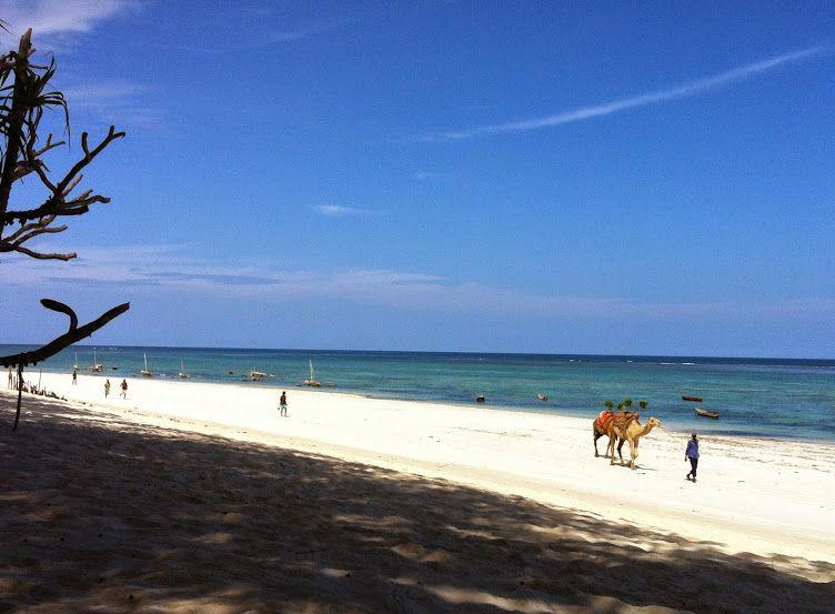 Maua Lodge - Wonderful DianiBeach, award 2015 best beach of Africa