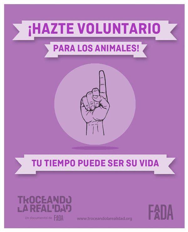 #DOCUMENTAL #ANIMALES #CROWDFUNDEADO #CROWDFUNDING - Documental de la entidad de protección animal FAADA que analizará la relación entre las personas y los otros animales. Sin imágenes duras e invitando a que cada uno saque sus propias conclusiones, trataremos de unir los trozos de una realidad que pocas veces se nos muestra completa. cartel poster dedo finger purple +info http://faada.org/ Crowdfunding verkami http://www.verkami.com/projects/8789-troceando-la-realidad-un-documental-de-faada