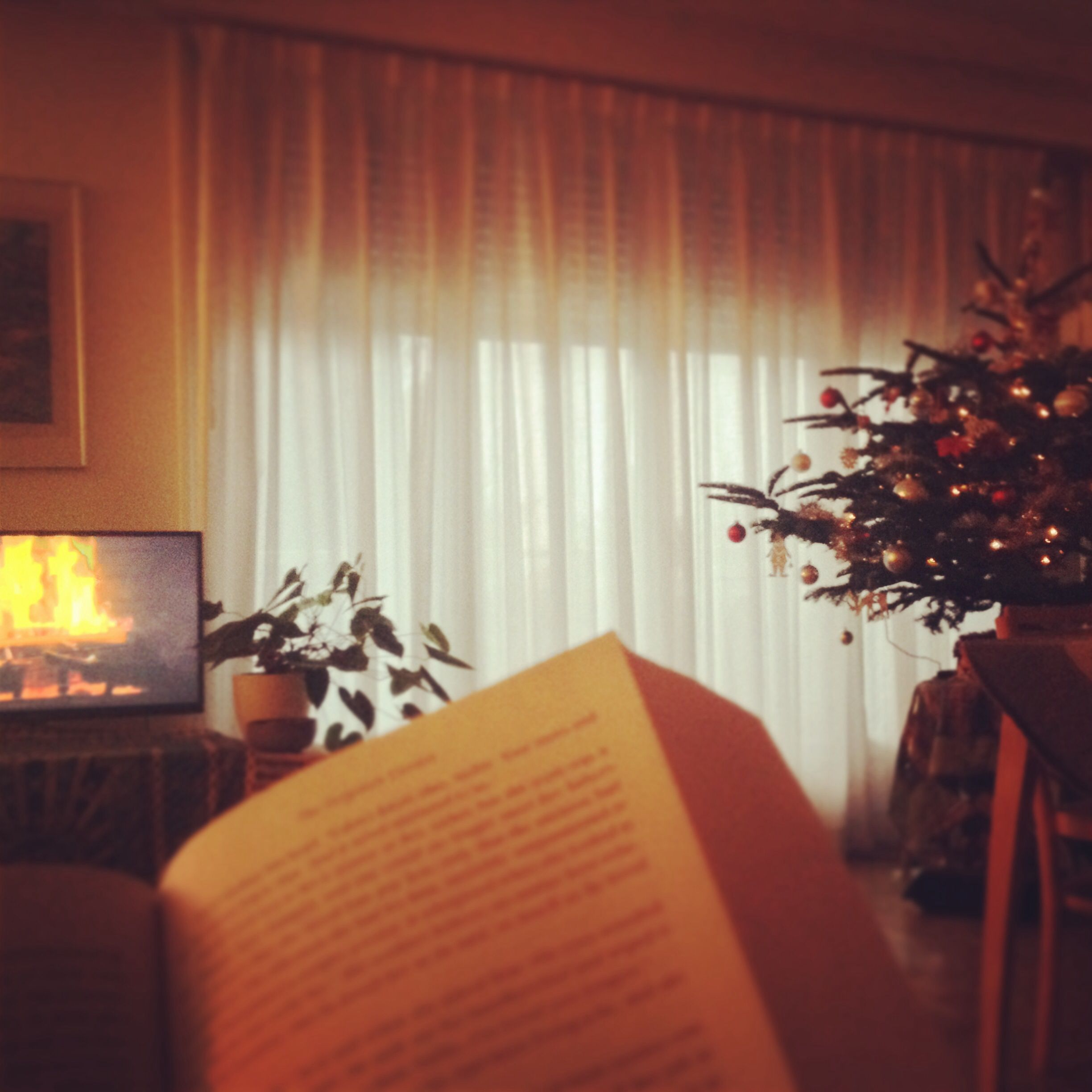 A good book, a modern fireplace and a beautiful Christmas tree. Nothing better.