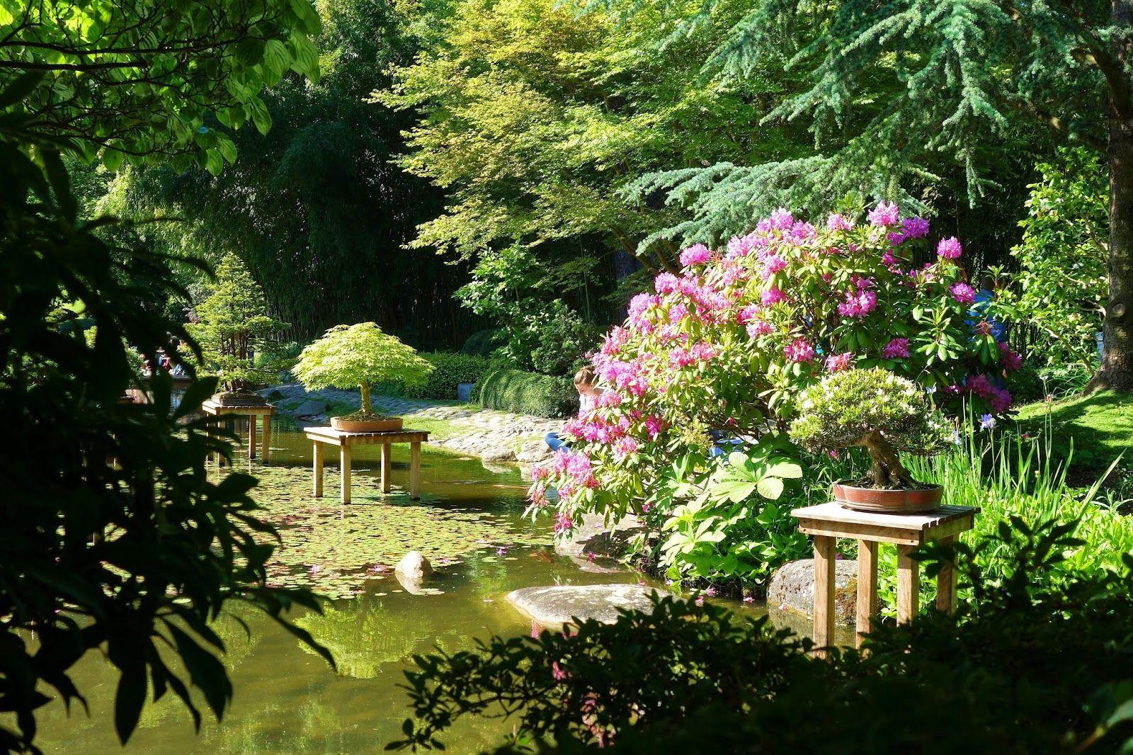 Semaine Japonaise Paris Village Et Jardin Japonais Au Musee