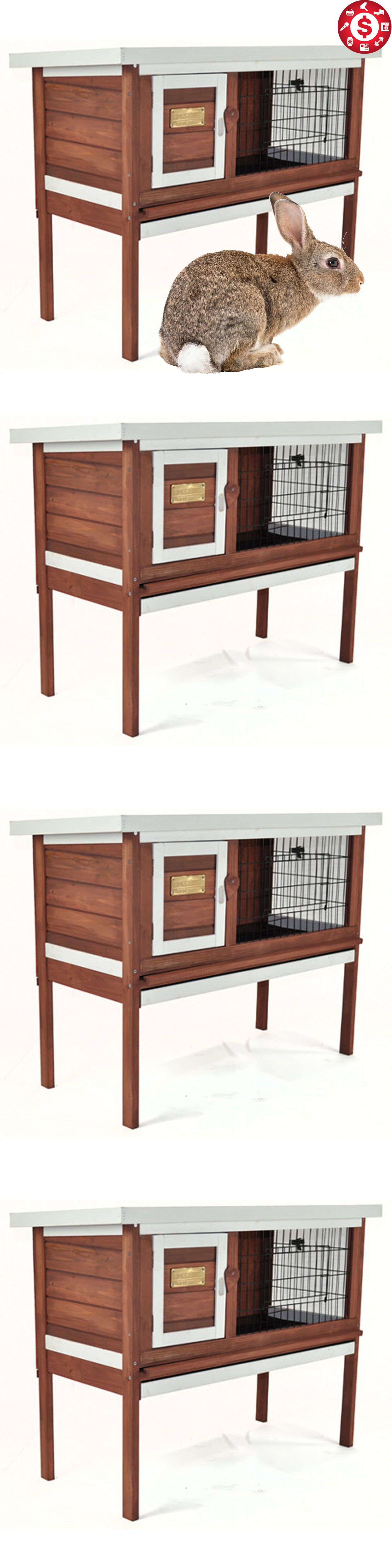 Home Woodshop Tools | Pet cage, Animal house and Small animals