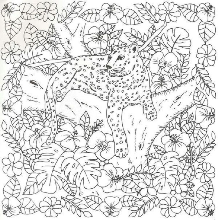 Cheetah Coloring Pages For Adults Coloring Pages Batman Coloring Pages Animal Coloring Pages