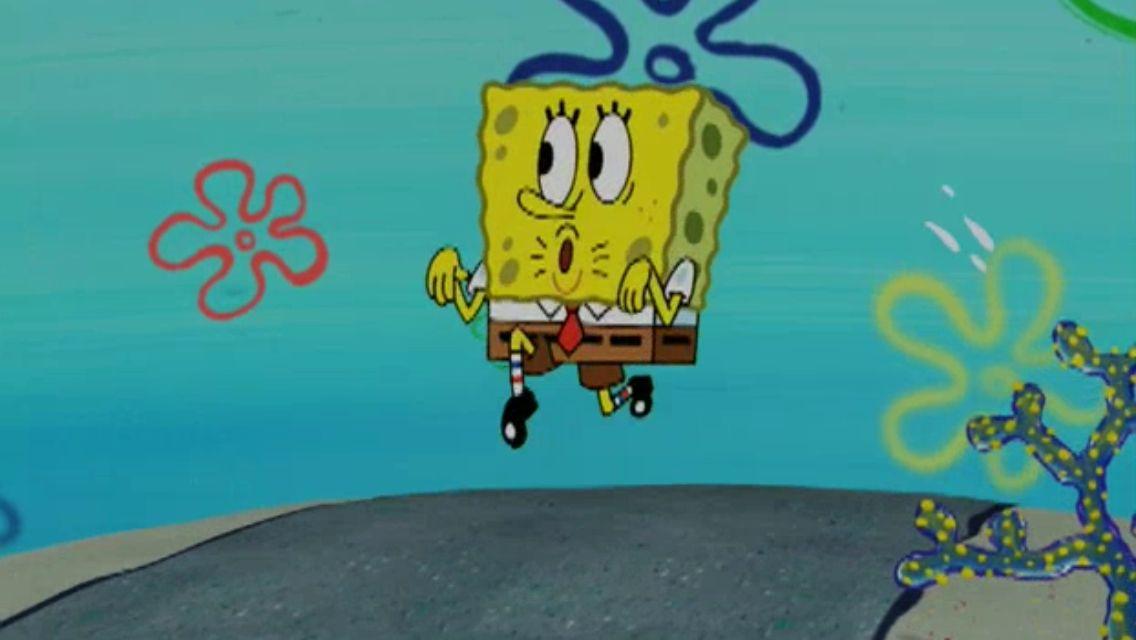 Sponge Cak Lines