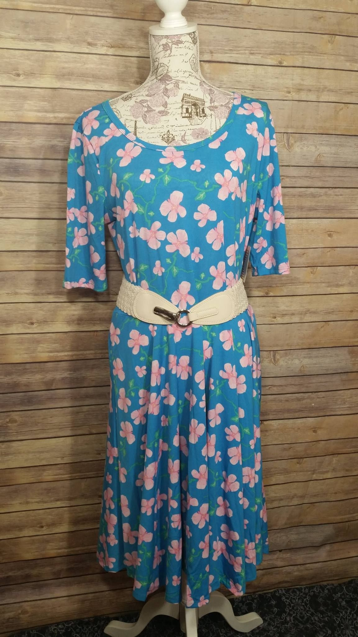 Gorgeous Blue With Pink Flowers Lularoe Nicole Dress Womens