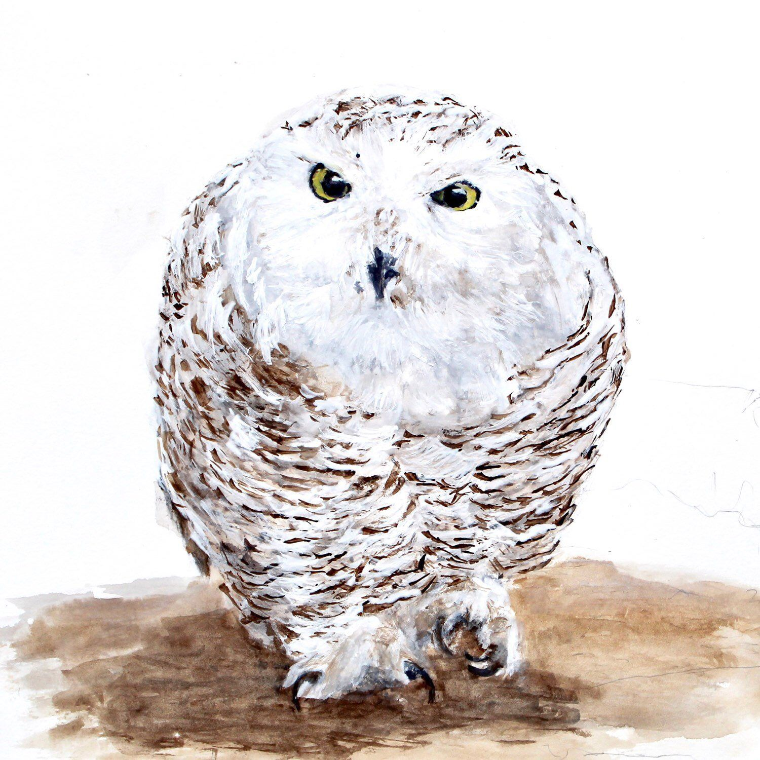 Archival Giclee Fine Art Print of Snowy Owl created from