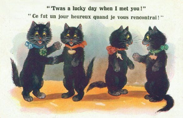 Lucky Black Cat Postcard In England Black Cats Are Considered A