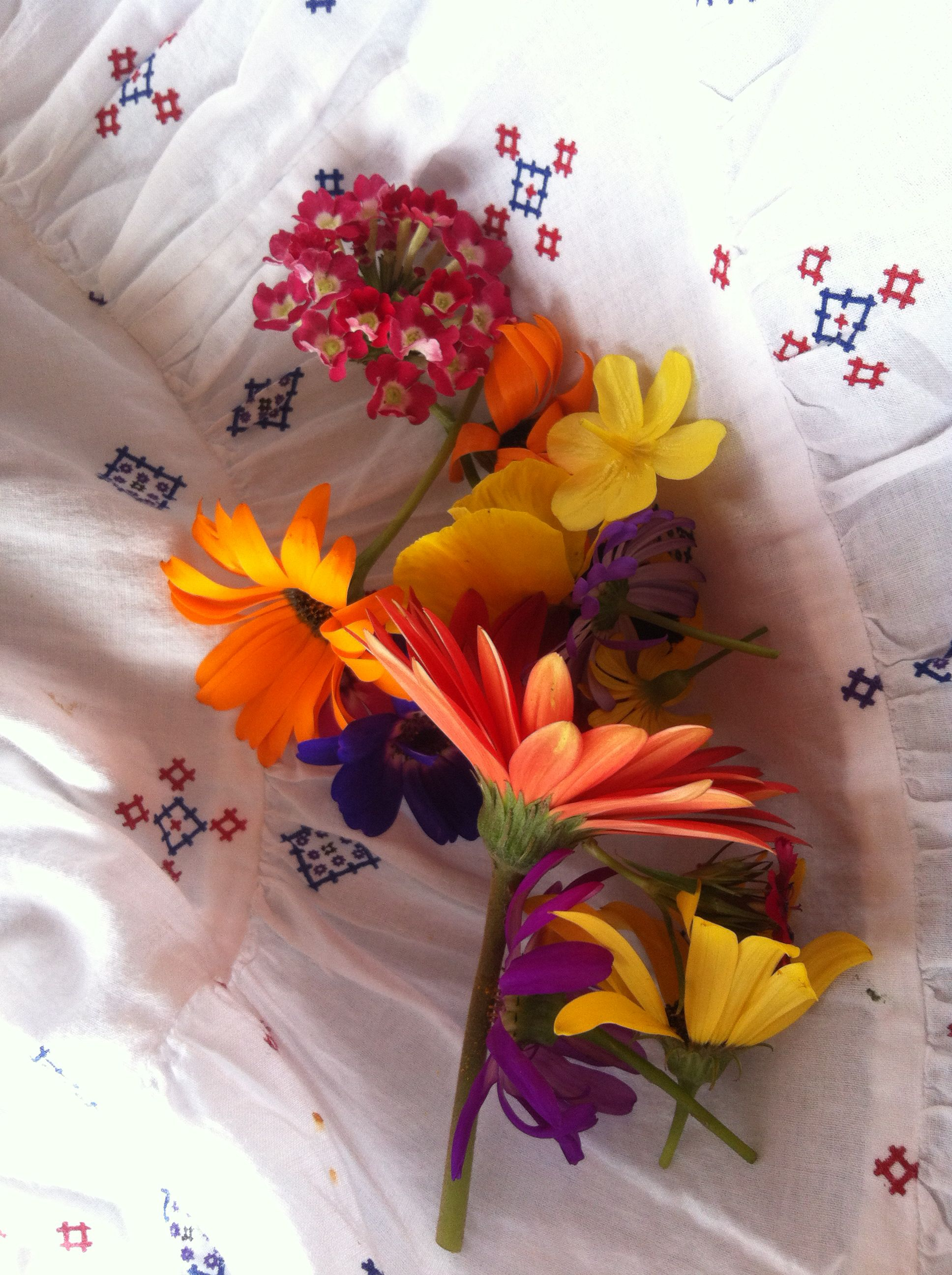 Spring Flowers At B 19 B Nineteen Boutique Hotel Pinterest