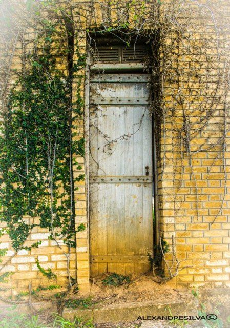 Porta de um antigo jardim