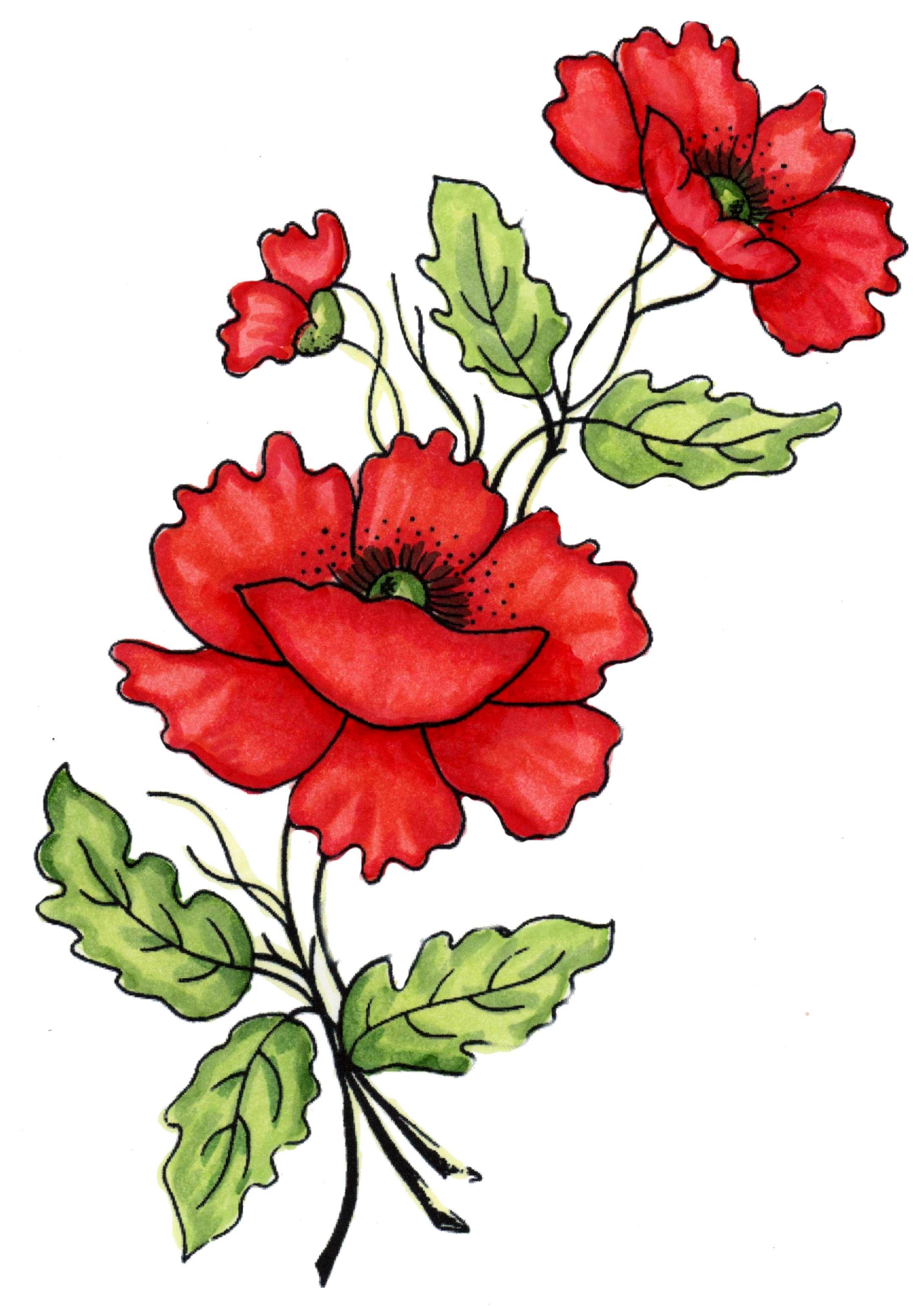 Картинки цветные растения