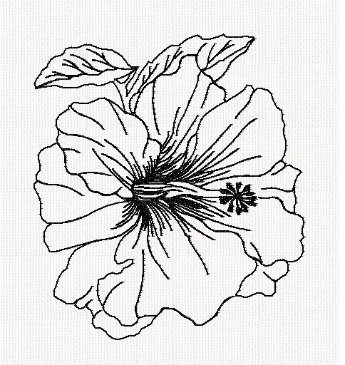 hibiscus-redwork-embroidery