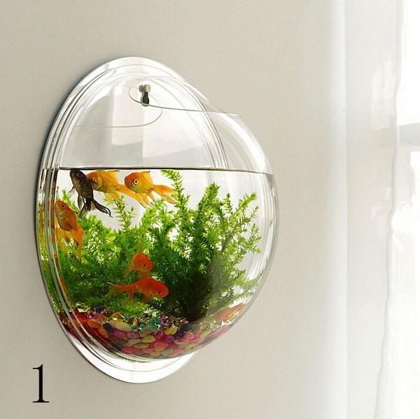 Wall-type mini-aquarium fish bowl | Pinterest | Fish tanks, Wall ...