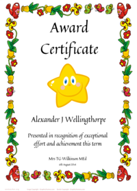 Certificate Template : Free Funny Certificate Templates For Word ...