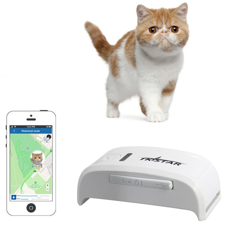 Mini GPS Dog Pet Tracker Device With Google map Free ... Google Map App For Pc on android app for pc, ibooks app for pc, imessage app for pc, garageband app for pc, amazon instant app for pc, whatsapp app for pc, facebook app for pc,