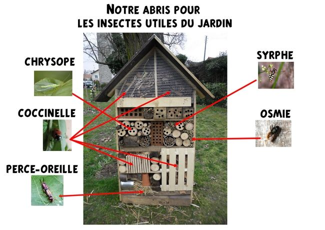 Site internet de l 39 cole maternelle danielle casanova l for Escargot decoration jardin