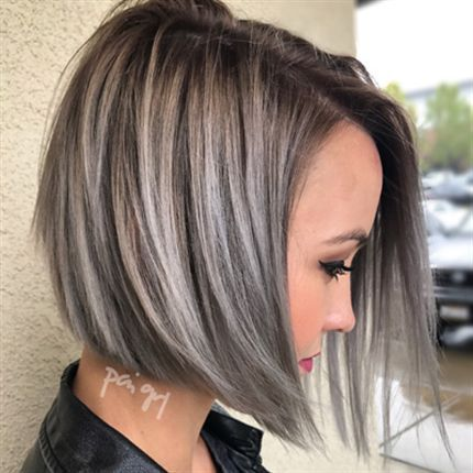 Stormy Silver Color Formula Gray Hair Highlights Brown Hair