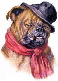 vintage dog art bulldog smoking a cigar wearing a black hat