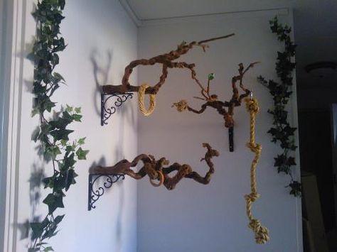 A beautiful idea and fun for the birds birds for Oiseau domestique interieur