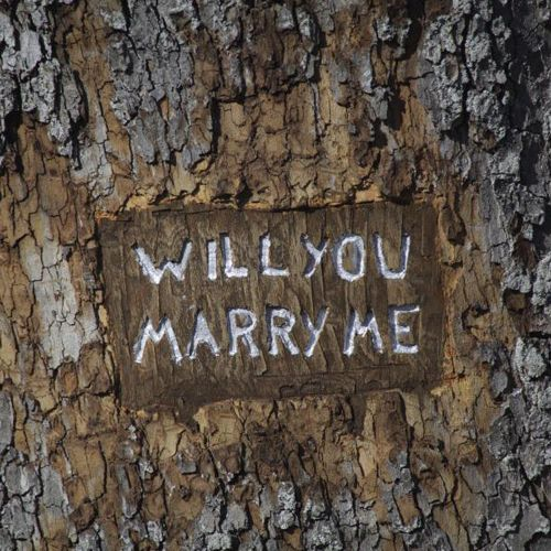 Leap Day, Proposal, Marry Me