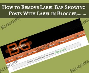 Almost In Every Default Blogger Layout When We Click On Any Lable