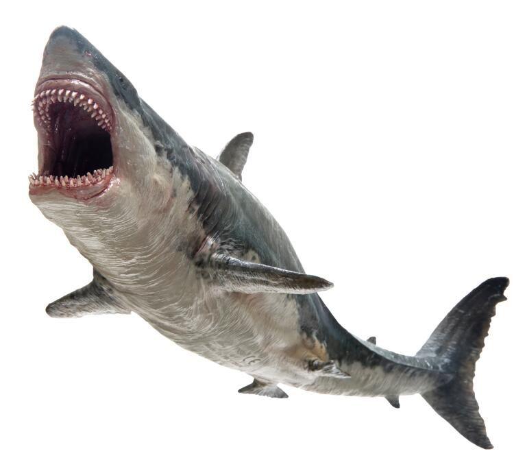 Shark Toys For Boys With Boats : Megalodon shark jaws sea life classic toys for boys
