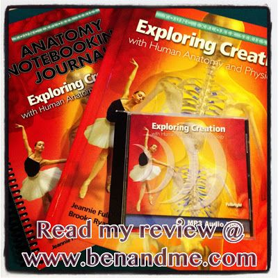 Schoolhouse Crew Review Exploring Creation With Human Anatomy And