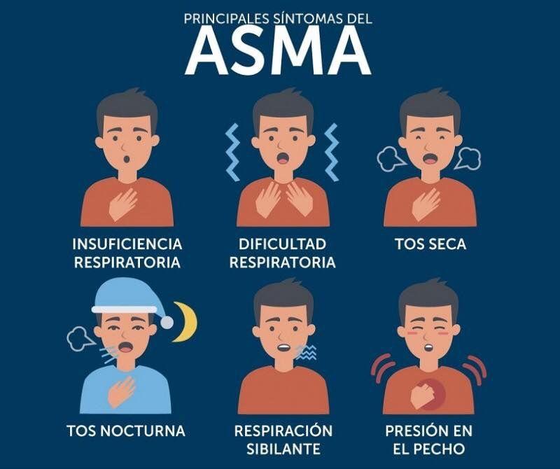 Infografía Principales Síntomas del Asma. Vocabulario de la salud ...
