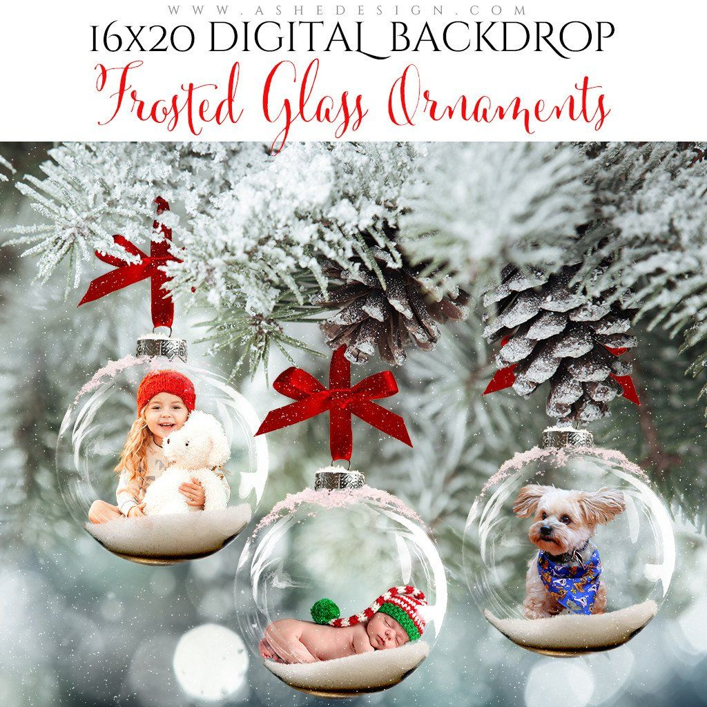 Digital Props 16x20 Backdrop Set - Frosted Glass Ornaments ...